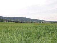 Böhmerwaldrücken von Aigen aus