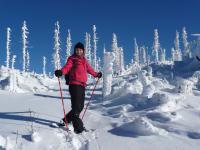 Schneeschuhwanderung im Böhmerwald