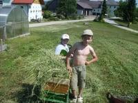 Andreas und Julian bei der Heuernte
