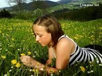 Frühling am Woadhof - Löwenzahnblüten wohin das Auge reicht