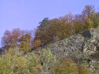 Donauleithen