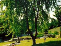 Kranzling - naturnahes Baden