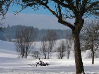 Garten mit Winterlandschaft