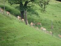 unsere Landschaftspfleger