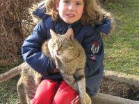 Katzen - Lieblinge aller Kinder