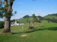 Heilsweg in Maria Neustift