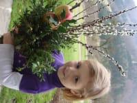 Isabella mit Palmbuschen