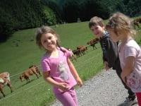 Wie macht die Kuh?