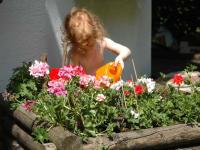Johanna hilft beim Blumen gießen