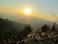 Almwiese vor Sonnenuntergang
