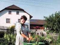 Hausgarten mit frischem Gemüse