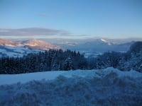 Schafberg Panorama im Winter