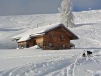 Die Hütte liegt inmitten des Almgebietes Spielbergalm