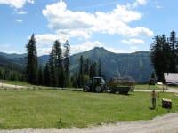 Aussicht von der Hütte zum Schmittenstein, hier wird gerade das Almheu eingebracht