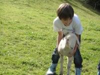 Kinder mit Lamm