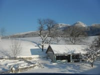 Winter-Gartenblick