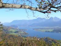 Blick vom Falkenstein