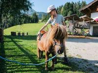 Ponys pflegen