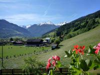 Ausblick zum Bauernhof