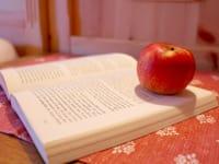 einmal gemütlich ein Buch lesen