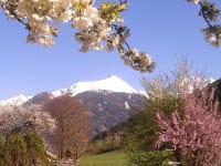 Frühling in Gastein