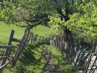 Wanderwege führen direkt bei unserem Hof vorbei
