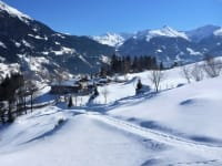 Winterwanderung - Tierspuren im Schnee entdecken