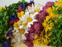 Blumen für Prangstangen