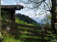 Hütte am Fischteich