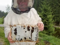 Grandpa with a honey frame