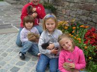 Sophie, Anna und Theresa mit den kleinen Hasen