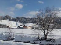 Winterfoto im Vordergrund sieht man die Enns