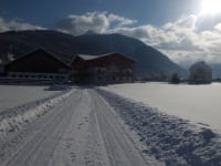 Winter 2013 im Dezember