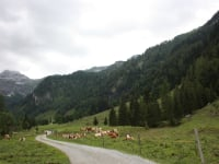 Wanderung-Marbachtal