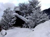 Winter 2011/12