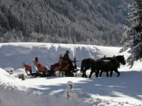 Romantische Pferdekutschenfahrten