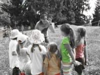 Kräuterwanderung für Kinder