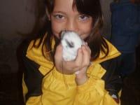 Tierfreundschaft 2