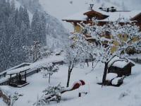 die weisse Pracht - der 1. Schnee