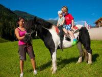 Unser Pony