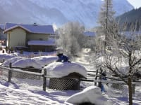Kleintierzoo im Schnee