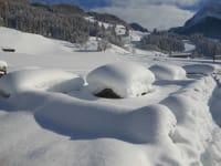 Kleintierzoo im Winter
