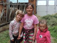 3 Mädels im Kuhstall
