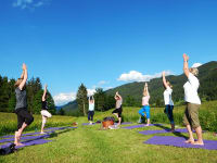 Yoga in der Blumenwiese