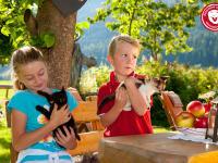 Kinder mit Katzen