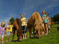 Kinder mit unseren Pferden