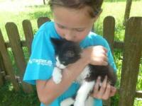 Leonie  und Kätzchen
