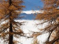Herbstausicht