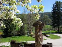 Brunnen im Frühling