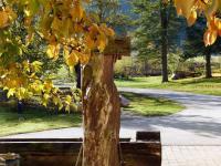 Brunnen im Herbst